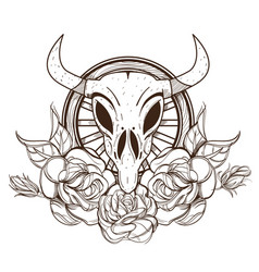Cow or bull skull with roses outline isolated on vector