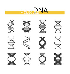 dna images - line design style elements vector image