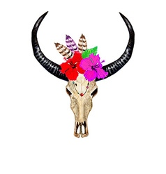 Bull Skull Hibiscuses vector