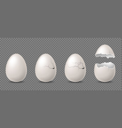 cracked egg realistic white chicken eggs whole vector image