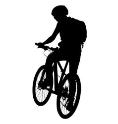 Cyclist silhouette scene vector image
