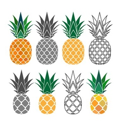 pineapple yellow gray icons set vector image