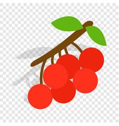 rowan branch isometric icon vector image vector image
