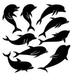 set black dolphins vector image