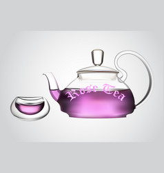 Teapot of flower tea with cup vector