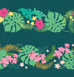 tropical flowers seamless horizontal border vector image