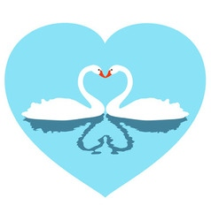 Two white lovers swans in blue heart vector
