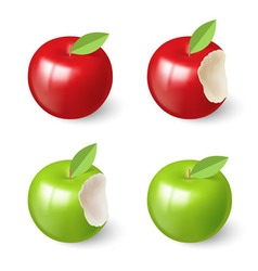 Apples vector