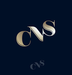 c n s golden monogram logo typography vector image