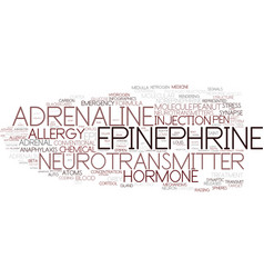 epinephrine word cloud concept vector image