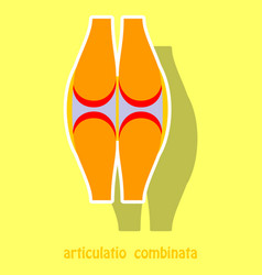 knee joint health care icon sticker vector image