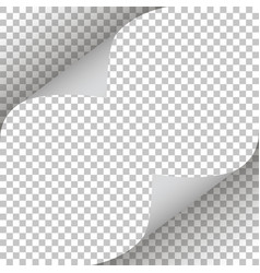 pages curl stylish design vector image