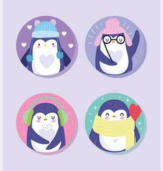 penguins bird animal cartoon wildlife with warm vector image