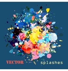 splashes colorful paints vector image vector image
