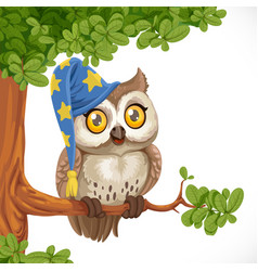 cute owl wearing a hat sitting on a tree branch vector image