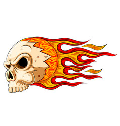 flames skull horror evil burn hot vector image