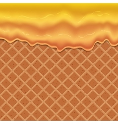 Flowing glaze on wafer texture sweet food vector