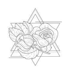 rose flowers in triangle geometrical frames hand vector image