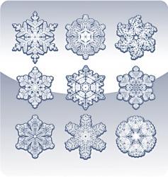 Set graceful snowflakes vector