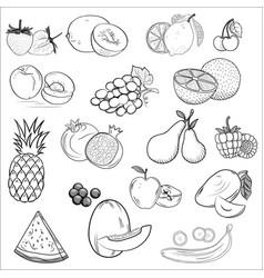 Set icons drawn fruit vector