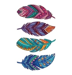 Set of colored ornate decorative feathers vector