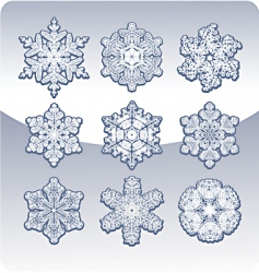 set of graceful snowflakes vector image