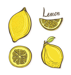 set of hand drawn sketch lemons isolated yellow vector image