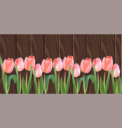 white tulip flowers realistic banner vector image