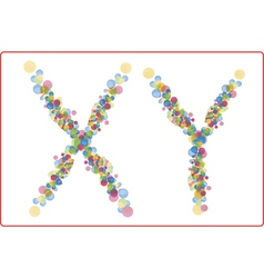 An abstract image of x and y chromosomes vector image