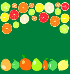Citrus fruits on a green background vector