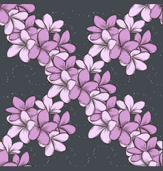 color seamless pattern plumeria flowers vector image