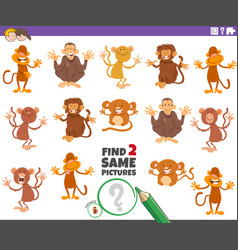 Find two same monkeys educational game vector