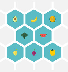 Flat icons muskmelon mango apricot and other vector