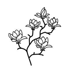 magnolia floral hand drawn design sign vector image