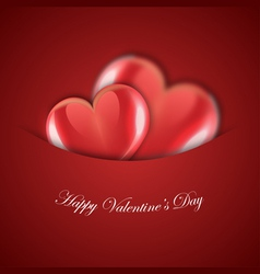valentines day red design vector image