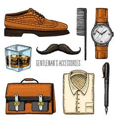gentleman accessories hipster or businessman vector image vector image