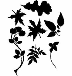 leaf silhouettes vector image vector image
