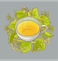 cup of linden tea vector image vector image