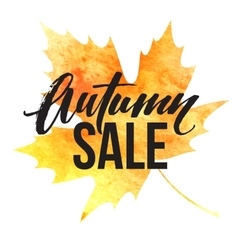 Autumn leaves Watercolor texture Fall leaf Sale vector