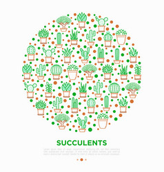 cactus and succelents in pots concept in circle vector image