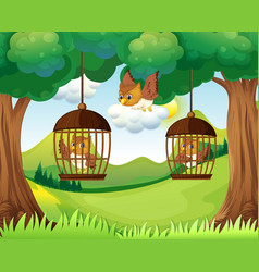 Owls in cages hanging on trees vector