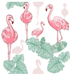 pink flamingo cute african bird seamless vector image