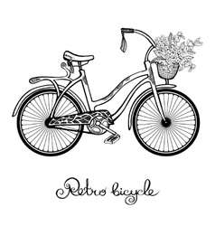 Retro Bicycle With Flowers vector