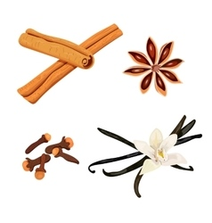 Set of spices vanilla cloves anise cinnamon vector