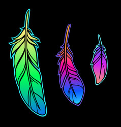 set three bright feathers vector image