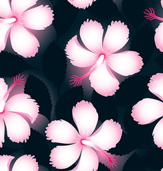 Pink and white tropical flowers on dark leaves vector image vector image
