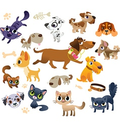 Collection of cats and dogs vector image