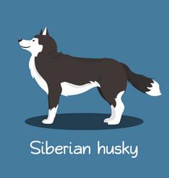 an depicting siberian husky dog cartoon vector image