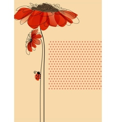 Elegant card with flowers and cute ladybug vector image vector image