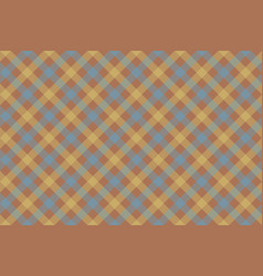 gray brown check diagonal fabric texture vector image vector image